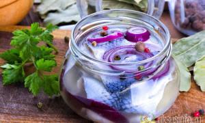 Как замариновать селедку с луком в уксусе: лучшие рецепты