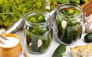 Маринованные хрустящие огурцы на зиму с уксусом: 11 простых и проверенных рецептов