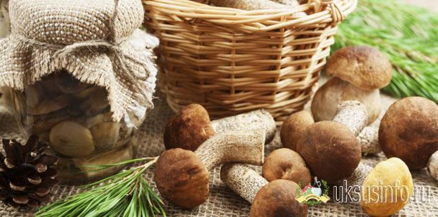 Подберезовики и подосиновики на зиму